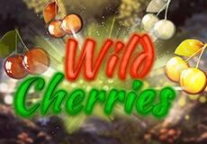 Wild Cherries Slots  (BOOM)