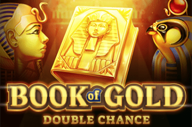 Book of Gold Double Chance slots  (Playson)