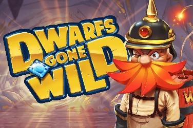 Dwarfs Gone Wild Slots  (Quickspin)