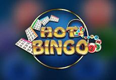 Hot Bingo Bingo  (Playngo)