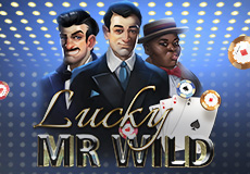 Lucky Mr. Wild Slots (Lady Luck Games)