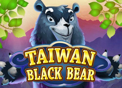 Taiwan Black Bear Slots  (KA Gaming)