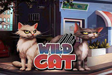 Wild Cat Slots  (Spinmatic)