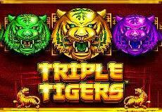 Triple Tigers Slots  (Pragmatic Play)