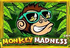 Monkey Madness™ Slots  (Pragmatic Play)