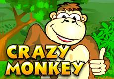 Crazy Monkey Slots  (BetConstruct)