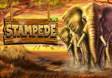 Stampede Slots  (Betsoft Gaming)