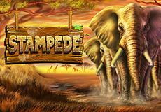 Stampede Slots  (Betsoft Gaming)