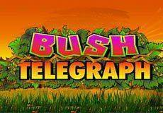 Bush Telegraph Slots  (Microgaming)