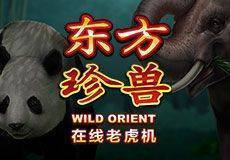 Wild Orient Slots  (Microgaming) PLAY IN DEMO MODE OR FOR REAL MONEY