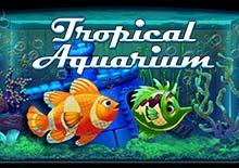 Tropical Aquarium HTML5 Arcade Mobile (Multislot)