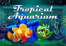 Tropical Aquarium Arcade  (Multislot)