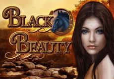 Black Beauty Slots Mobile (Gamomat)
