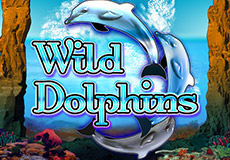 Wild Dolphins Slots  (Oryx Gaming)