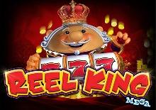 Reel King Mega Slots  (Red Tiger)