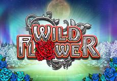 Wildflower Slots Mobile (Big Time Gaming)